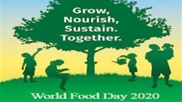 বিশ্ব খাদ্য দিবস: এখনো ক্ষুধার 'গুরুতর মাত্রা' ক্যাটাগরিতে বাংলাদেশ
